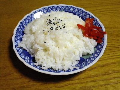 11/30食事!